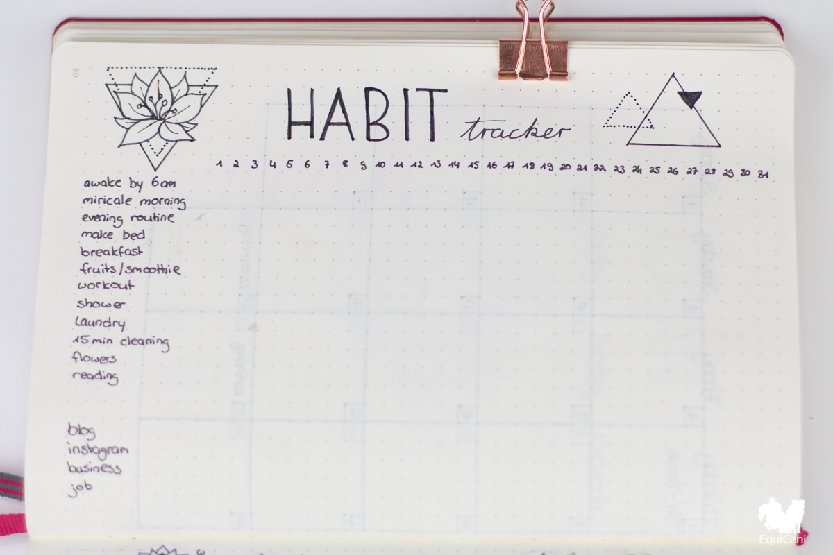 Bullet Journal Plan with me March let spring begin Habit Tracker