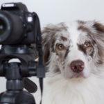 [Werbung] Mein ganzes Fotoequipment