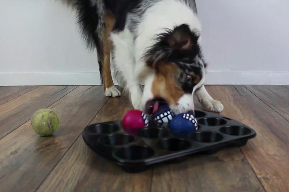 Indoor Beschäftigungsideen Teil 2 Muffin Tin Game Laundry Basket